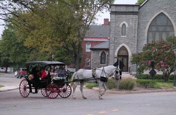 Horse Drawn Carriage Rides Hampton Roads Norfolk Williamsburg