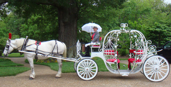 Cinderella Pumpkin Horse Carriage
