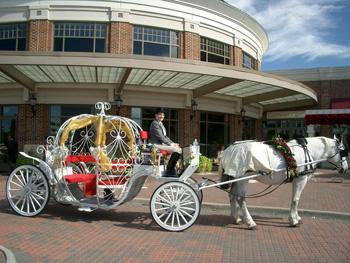 Hampton Smithfield Suffolk Richmond South County Virginia Pony Parties For Grand Openings Corporate Picnics Birthday