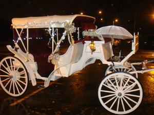 Princess Horse Carriage