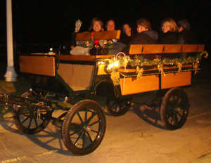 Wagonette Horse Carriage